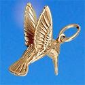 Bijoux des îles plaqué-or